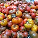 Heirloom_tomatoes