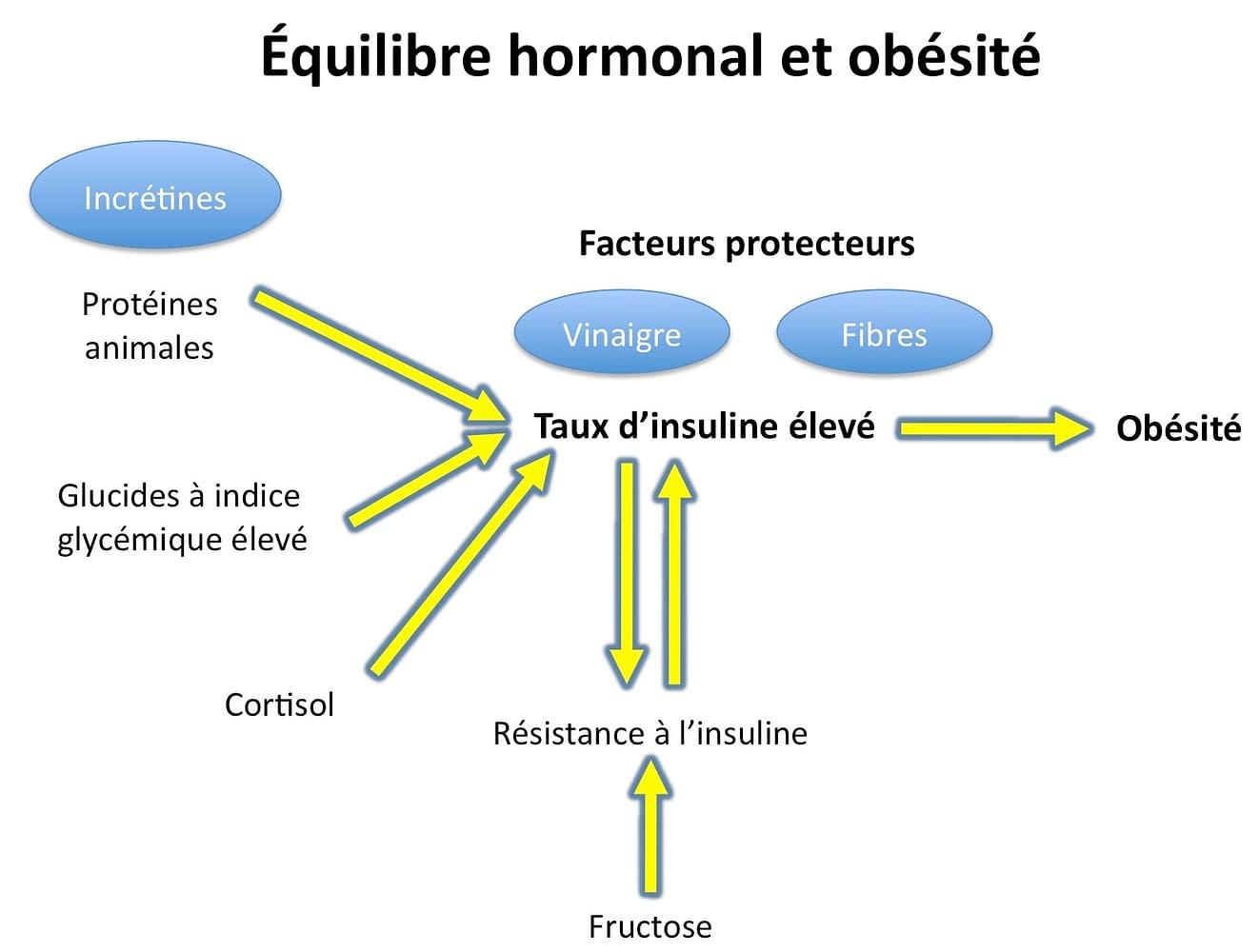HormonalTheoryOfObesity-fr