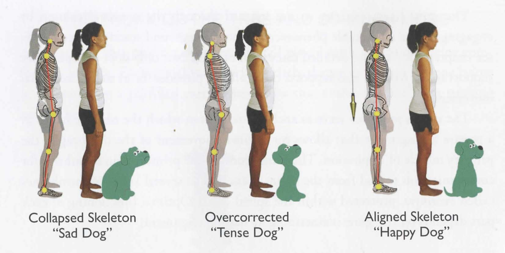 sad-tense-happy-dog-standing